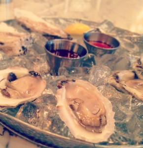 chesapeake oysters